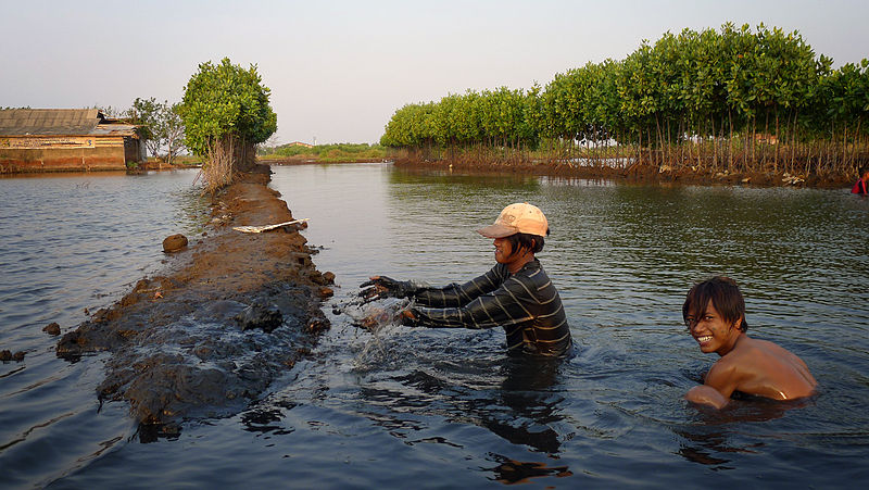 5 Facts about Aquaculture & Farmed Fish That Everyone ...