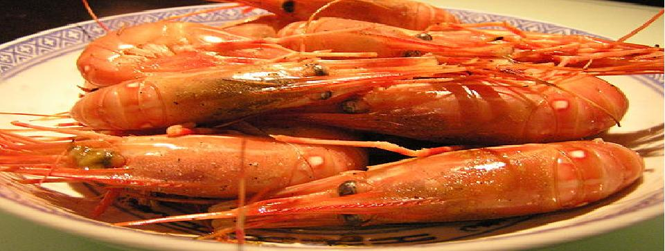 Marketing Strategies for Your Aquaculture & Shrimp Farm