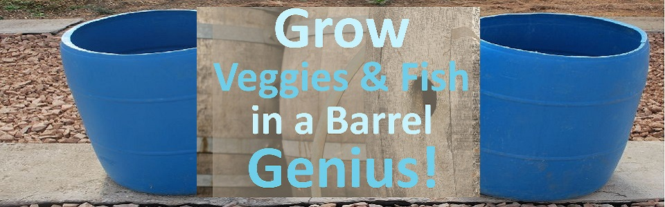 Backyard Veggie & Fish Farm in a Barrel – Your Organic Farm at Home