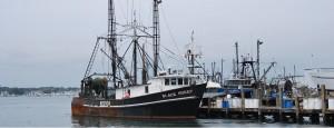 banner marine fish farming