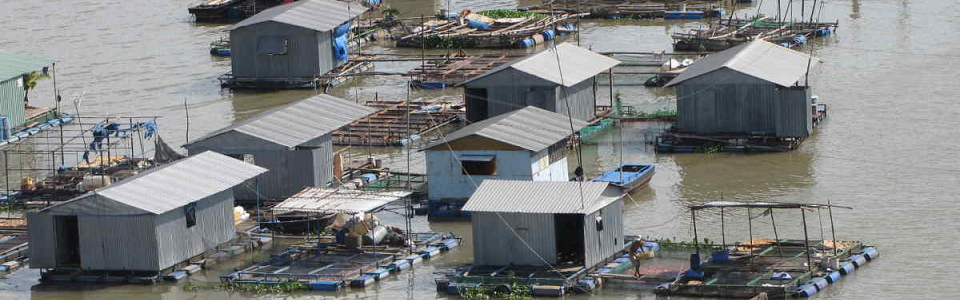 5 Surprising Facts about Fish Farming that Everyone Ought to Know