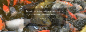Sustainable-Aquaculture-and-Consulting-3-1024x380
