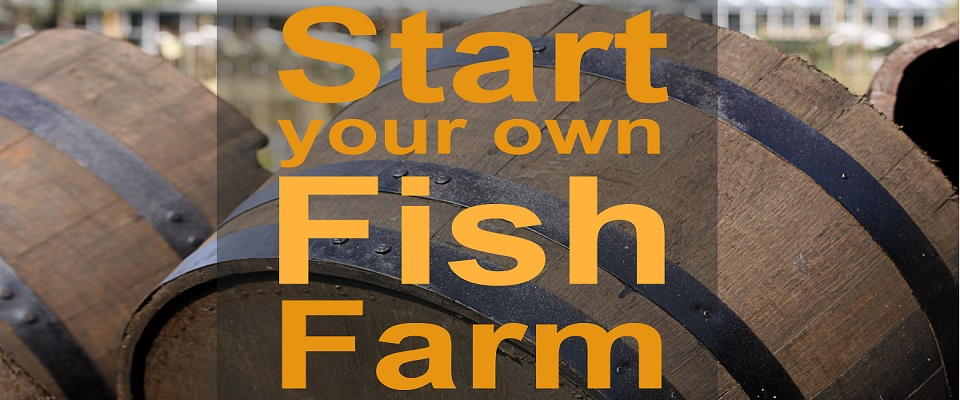 Turn your Home into a Home Based Fish Farm