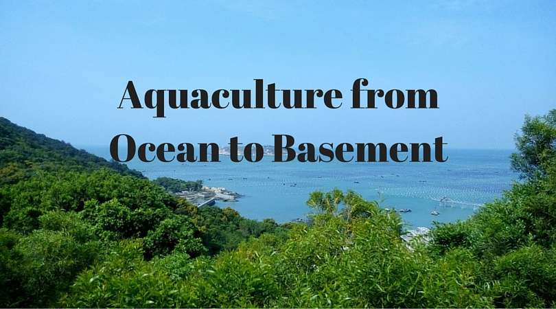 Aquaculture from Ocean to your Basement
