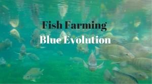 Blue Evolution