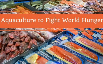 Contributions of Aquaculture in Meeting Global Protein Demands
