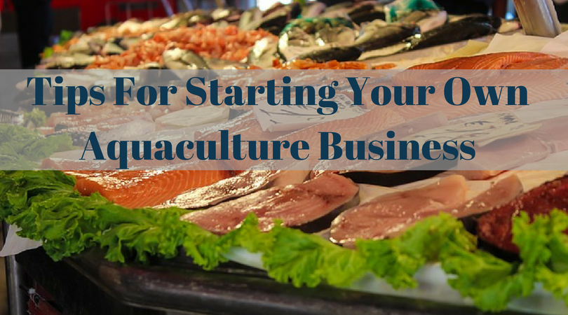 Tips For Starting Your Own Aquaculture Business