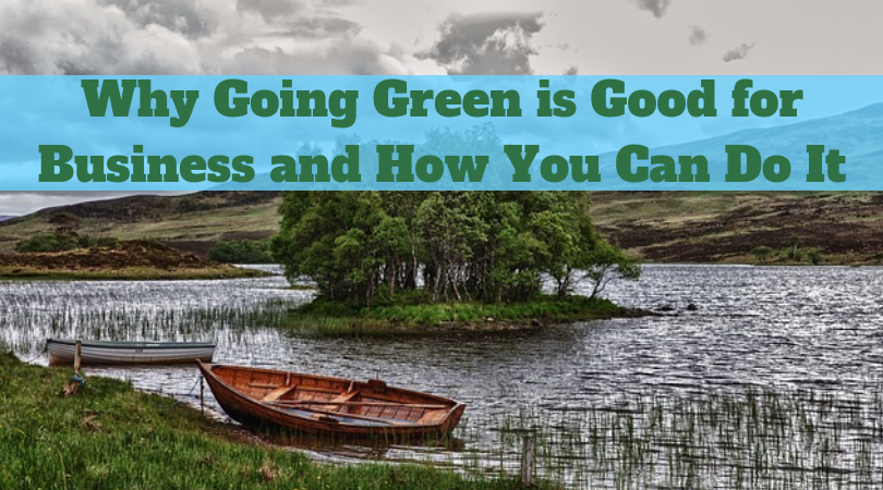 Why Going Green is Good for Business and How You Can Do It