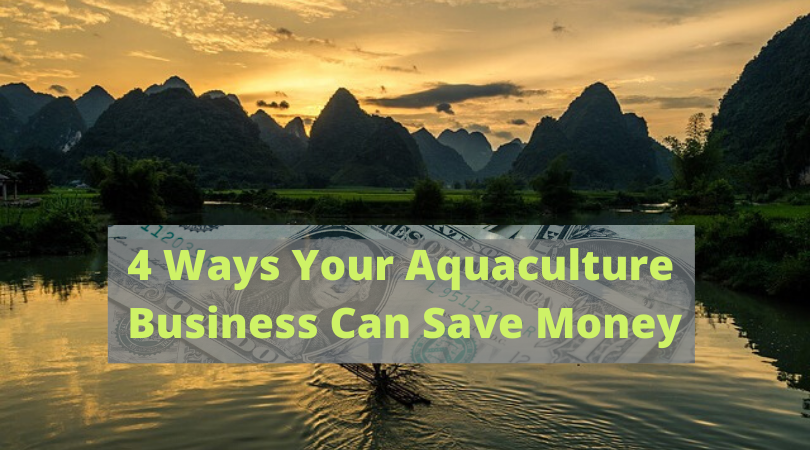 4 Ways Your Aquaculture Business Can Save Money