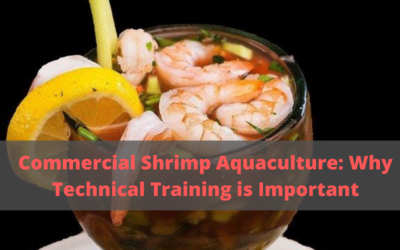 Commercial Shrimp Aquaculture: Why Technical Training is Important