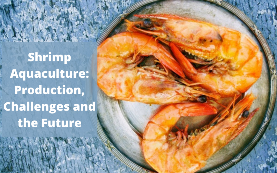 Shrimp Aquaculture: Production, Challenges and the Future