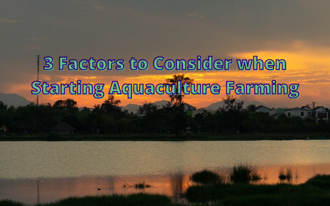 3 Factors to Consider when Starting Aquaculture Farming