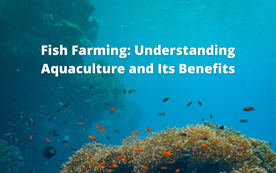 Fish Farming: Understanding Aquaculture and Its Benefits