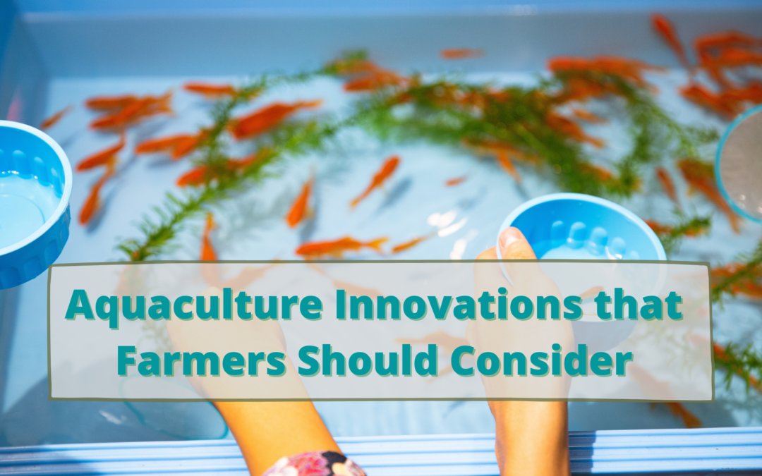 Aquaculture Innovations that Farmers Should Consider