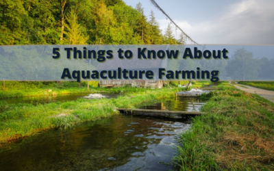 5 Things to Know About Aquaculture Farming