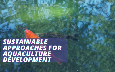 Sustainable Approaches for Aquaculture Development
