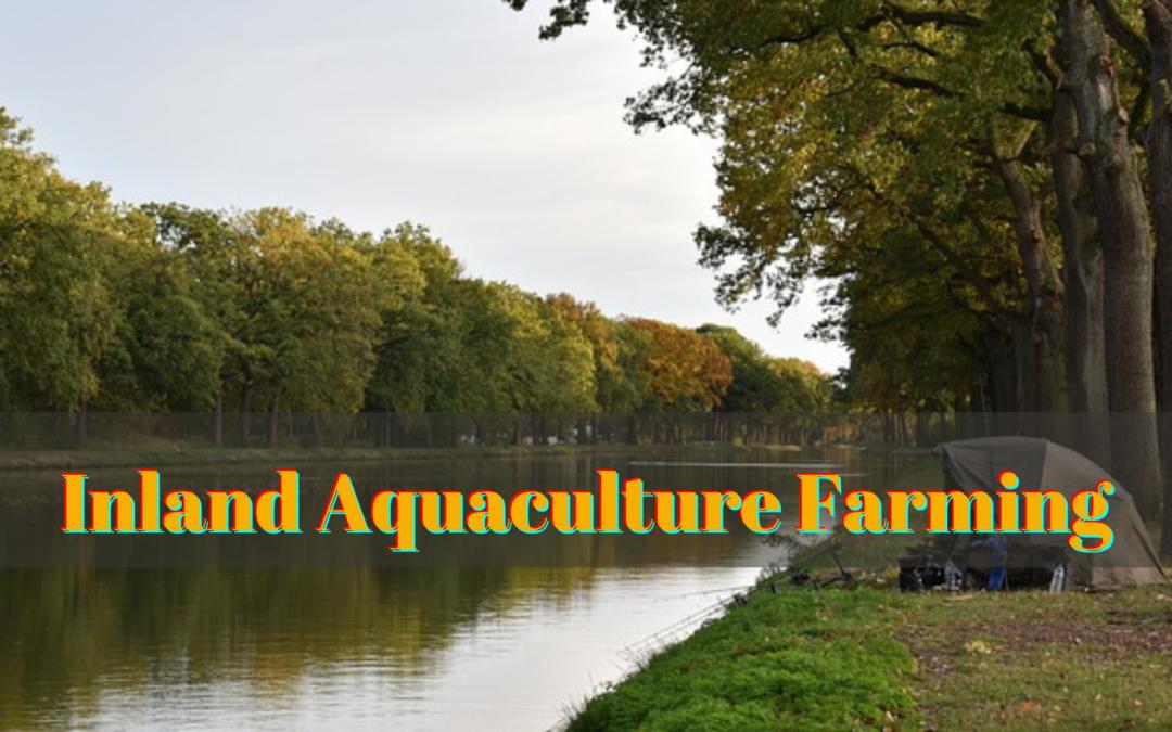 Inland Aquaculture Farming