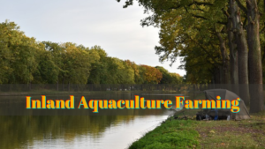 inland aquaculture