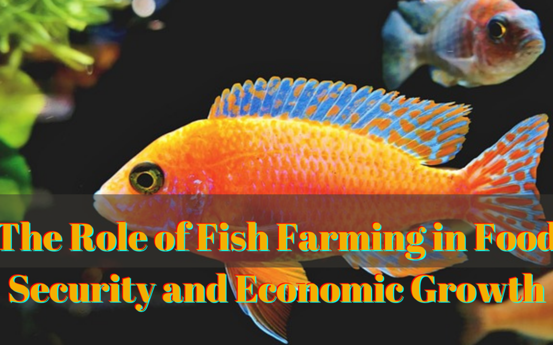 The Role of Fish Farming in Food Security and Economic Growth