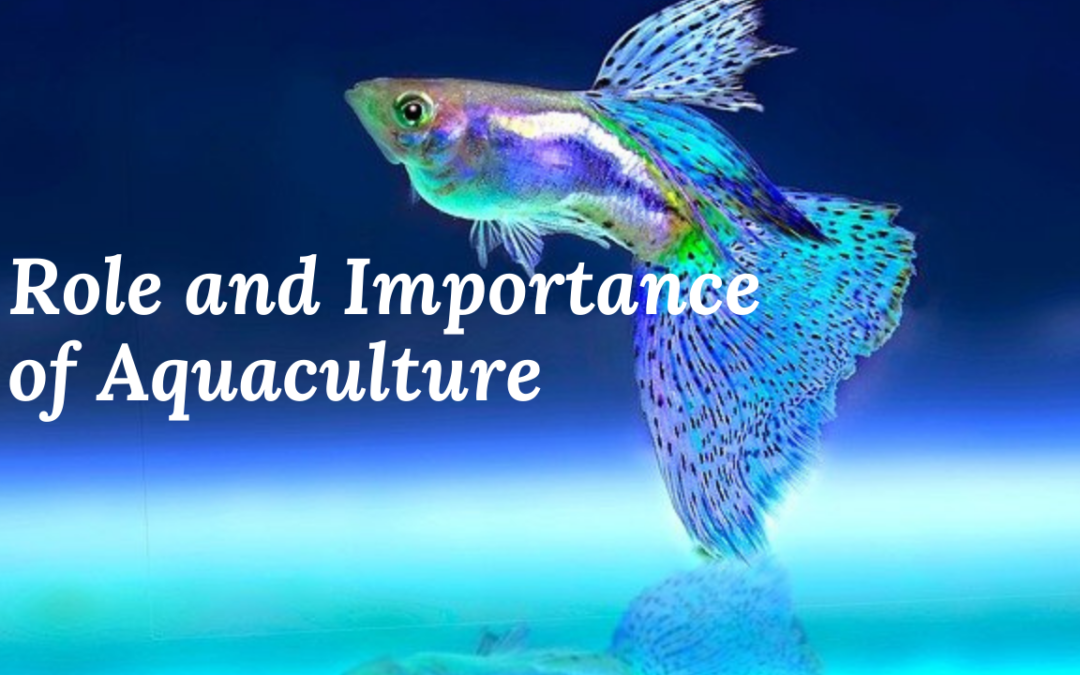 Role and Importance of Aquaculture