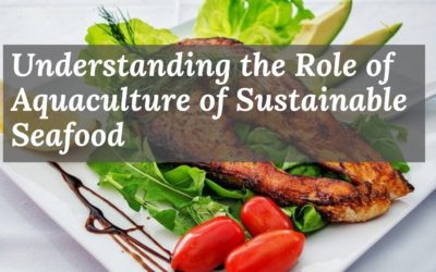 Understanding the Role of Aquaculture for Sustainable Seafood