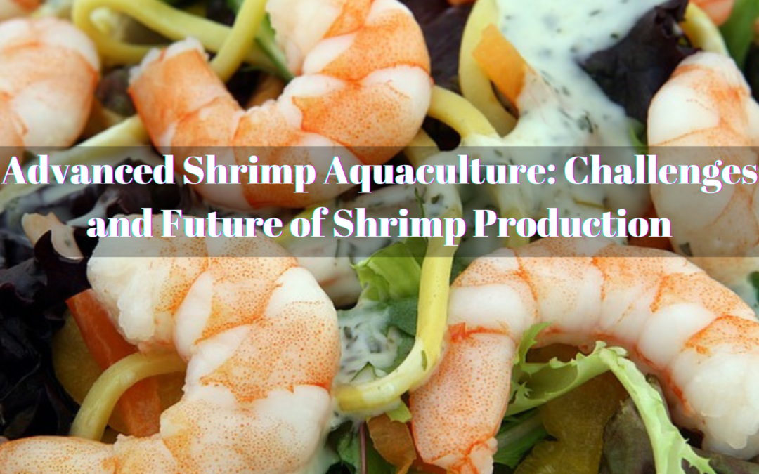 Advanced Shrimp Aquaculture: Challenges and Future of Shrimp Production