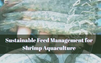 Sustainable Feed Management for Shrimp Aquaculture
